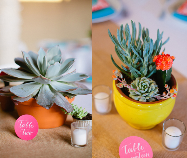Succulent-and-cacti-wedding-centerpieces